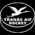 Hockeylag