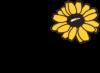 Gullkragen Logo